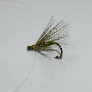 Imagen mosca verde oliva